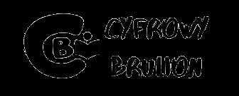 Cyfrowy Brulion